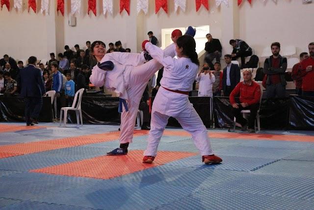 Anadolu Yıldızlar Ligi Bozova'da tamamlandı