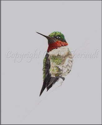 miniature bird painting in progress by wildlife artist Colette Theriault
