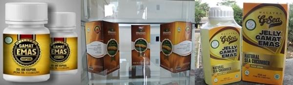 Tempat Penjualan Jelly Gamat Di Tangerang