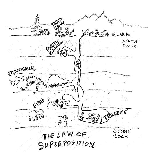 Law Of Superposition Worksheet Worksheets Tutsstar