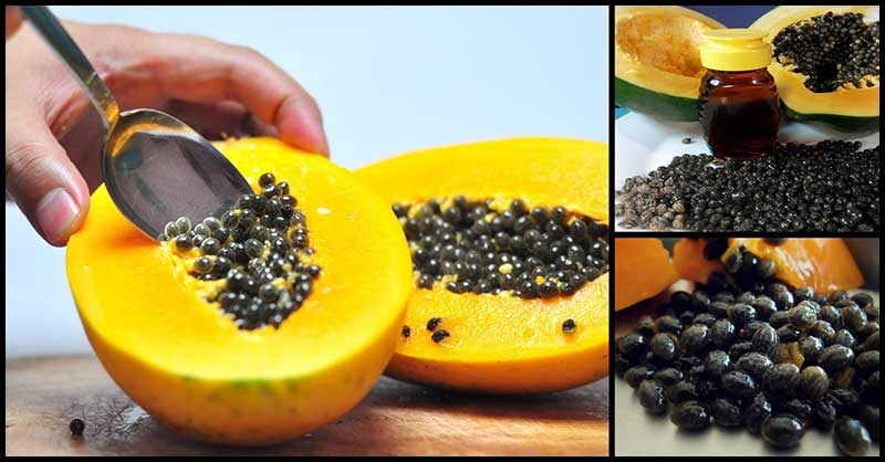 Throwing Away Those Papaya Seeds? Here Are Several Reasons To Have A