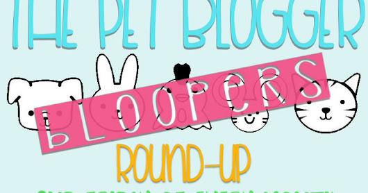 Pet Blogger Bloopers Roundup: August