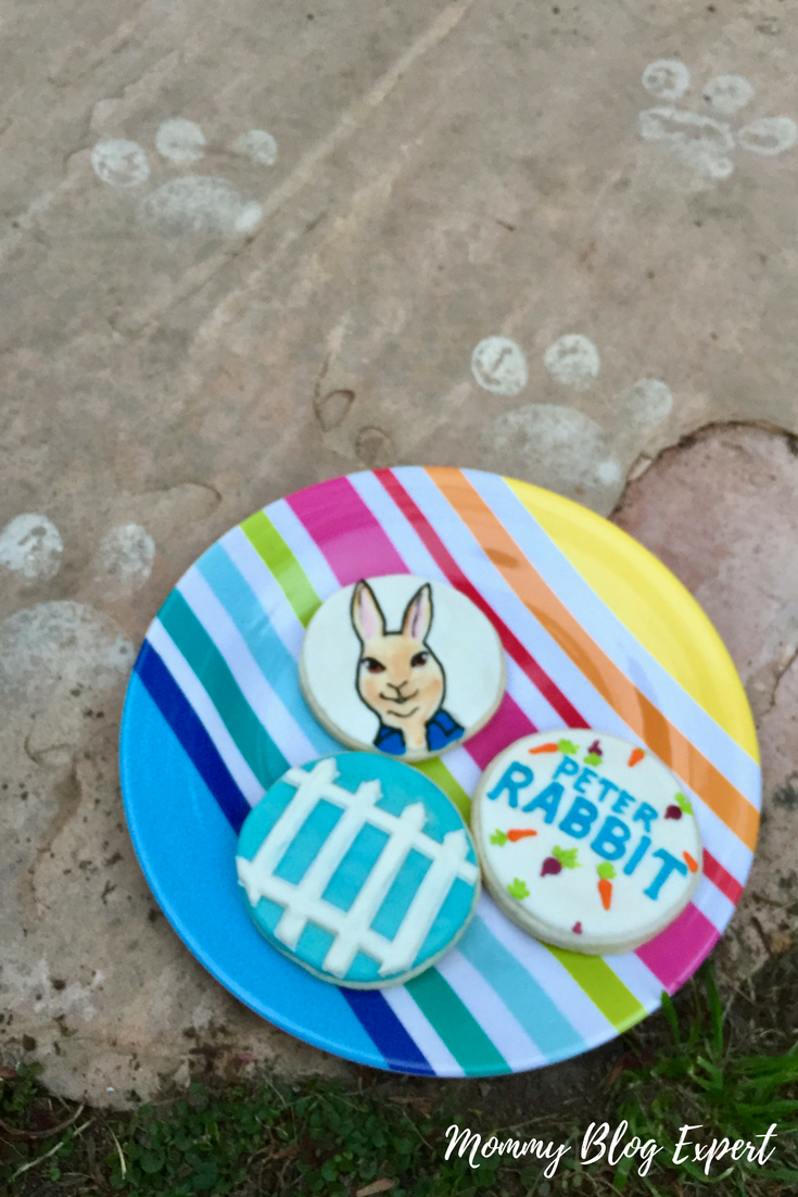 bunny live stream