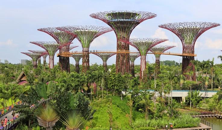 Kymberly Marciano Eco Gardens In The Sky