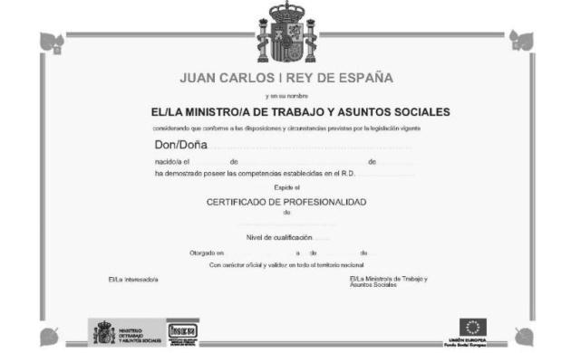 Certificado De Profesionalidad En Pintura Decorativa En Construcci Ef Bf Bdn