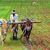 Odisha to Launch Nabakrushna Choudhury Seccha Unnayan Yojana