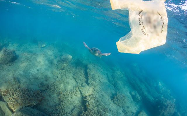 Απίστευτο: Βρέθηκε πλαστική σακούλα στο βαθύτερο σημείο των ωκεανών, στα 10.898 μέτρα!