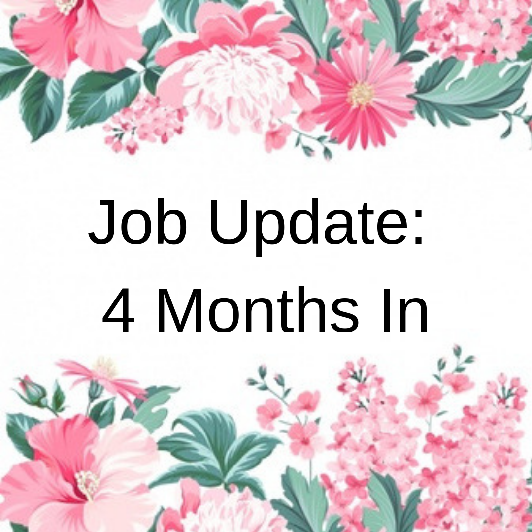Stephanie Kamp Blog: Job Update: 4 Months In