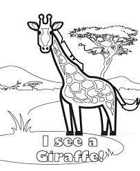 Baby Giraffe Coloring Pages With Name