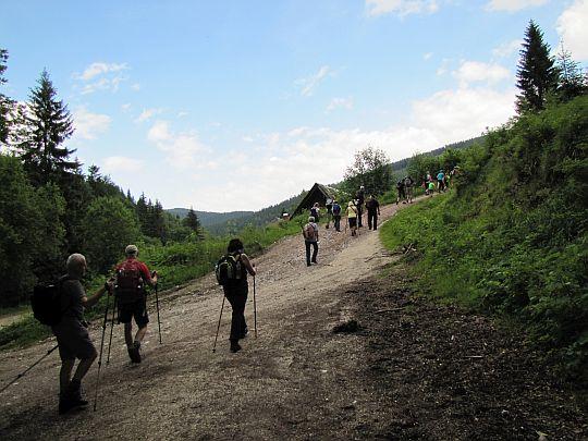 Początek podejścia na grzbiet Gór Złotych.
