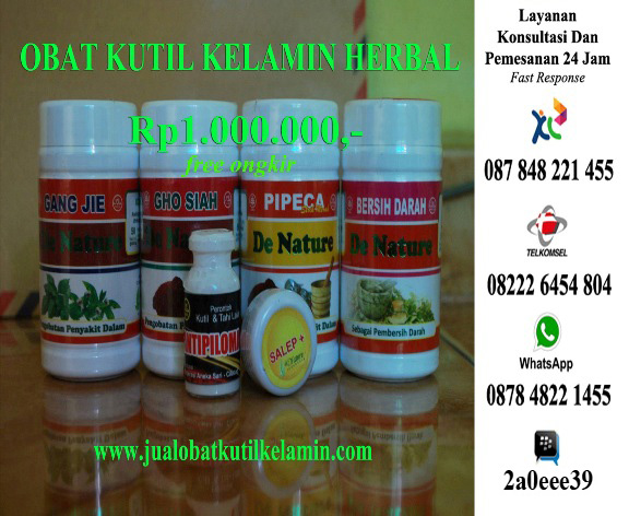 Obat Kutil Kelamin Herbal Tradisional