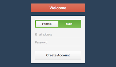 CSS Registration Form Template