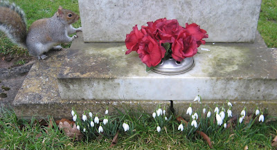 Snowdrops and squirrel on grave