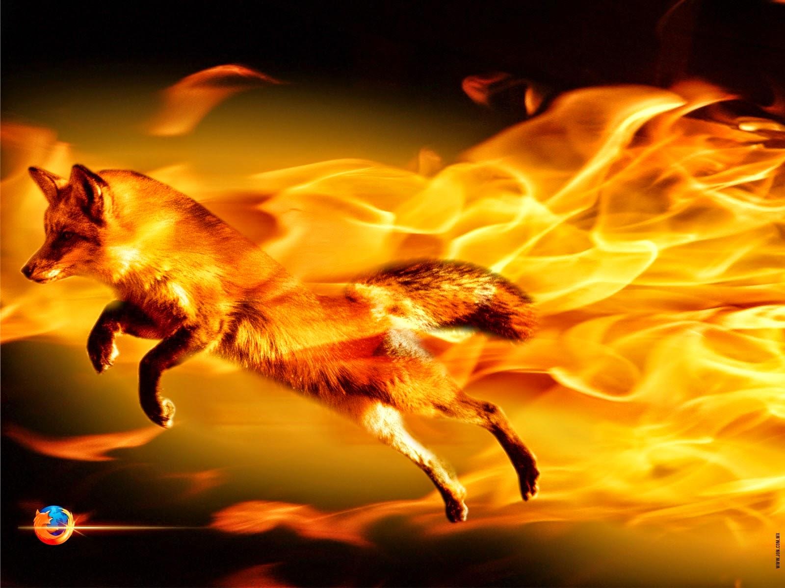 Optimizar FireFox con FasterFox