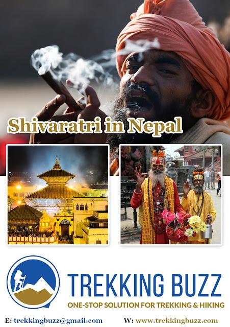 Maha Shivaratri Festival at Pashupatinath
