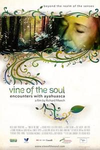 Watch Vine of the Soul: Encounters with Ayahuasca Online Free in HD
