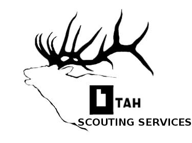 Utah Scouting Services: Home