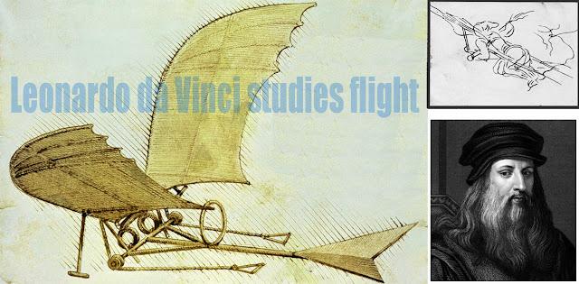 Leonardo da Vinci studies flight illustration picture
