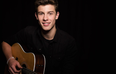 """Lirik Lagu Shawn Mendes - In My Blood"""
