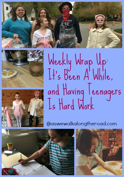 Weekly Wrap Up- Our family and homeschool adventures