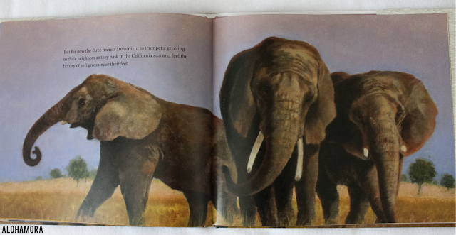 Elephant Journey: The True Story of 3 Zoo Elephants and their Rescue from Captivity by Rob Laidlaw earns 4.5 out of 5 stars in my book review of this non-fiction picture book.  Fun, enjoyable, educational, and enlightening read. Best suited for 4th, 5th, and 6th grade, but older kids and teachers could greatly benefit and come up with writing lessons.  Great book.  Elephants, support, health, captivity, wild, non-profit Alohamora Open a Book http://alohamoraopenabook.blogspot.com/