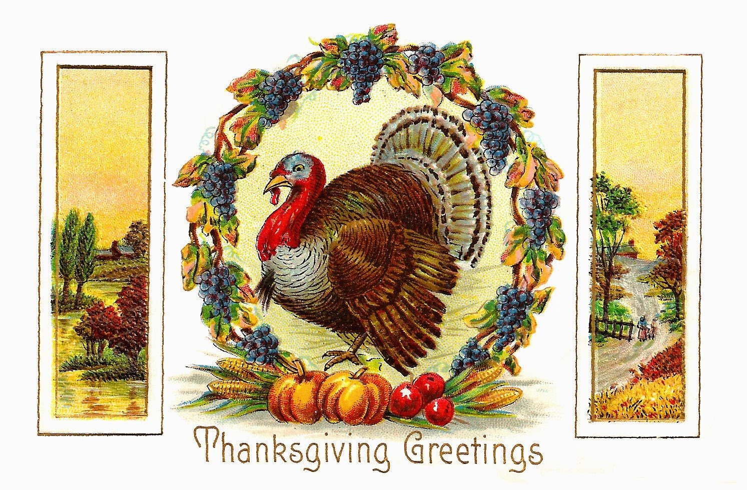 Thanksgiving Greetings with Turkey