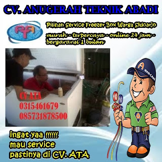 Pilihan Service Freezer Box Warga Sidoarjo