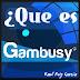 Que es Gambusy