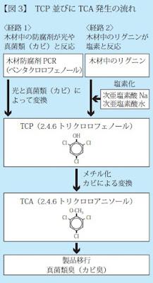 ①木材防腐剤PCR→光と真菌類によって変換→TCP→メチル化→TCA→製品移行 ②木材中のリグニン→塩素化→TCP→メチル化→TCA→製品移行