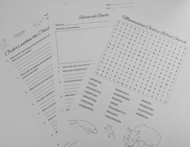 Lolly K Resources: Mammalian Orders