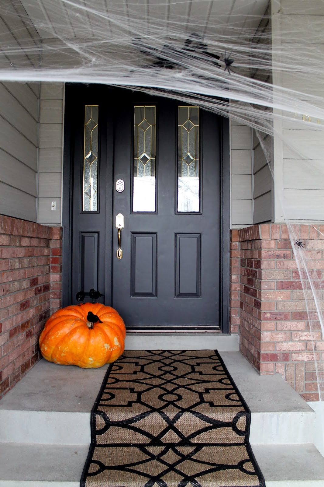 Entry Front Doors: Onyx And The Front Door