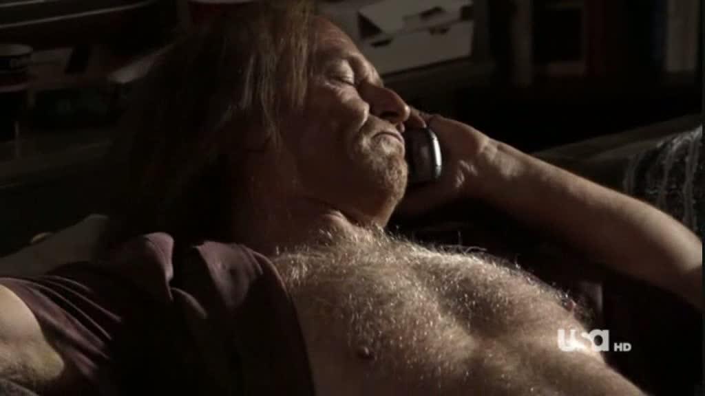 Corbin bernsen hairy chest