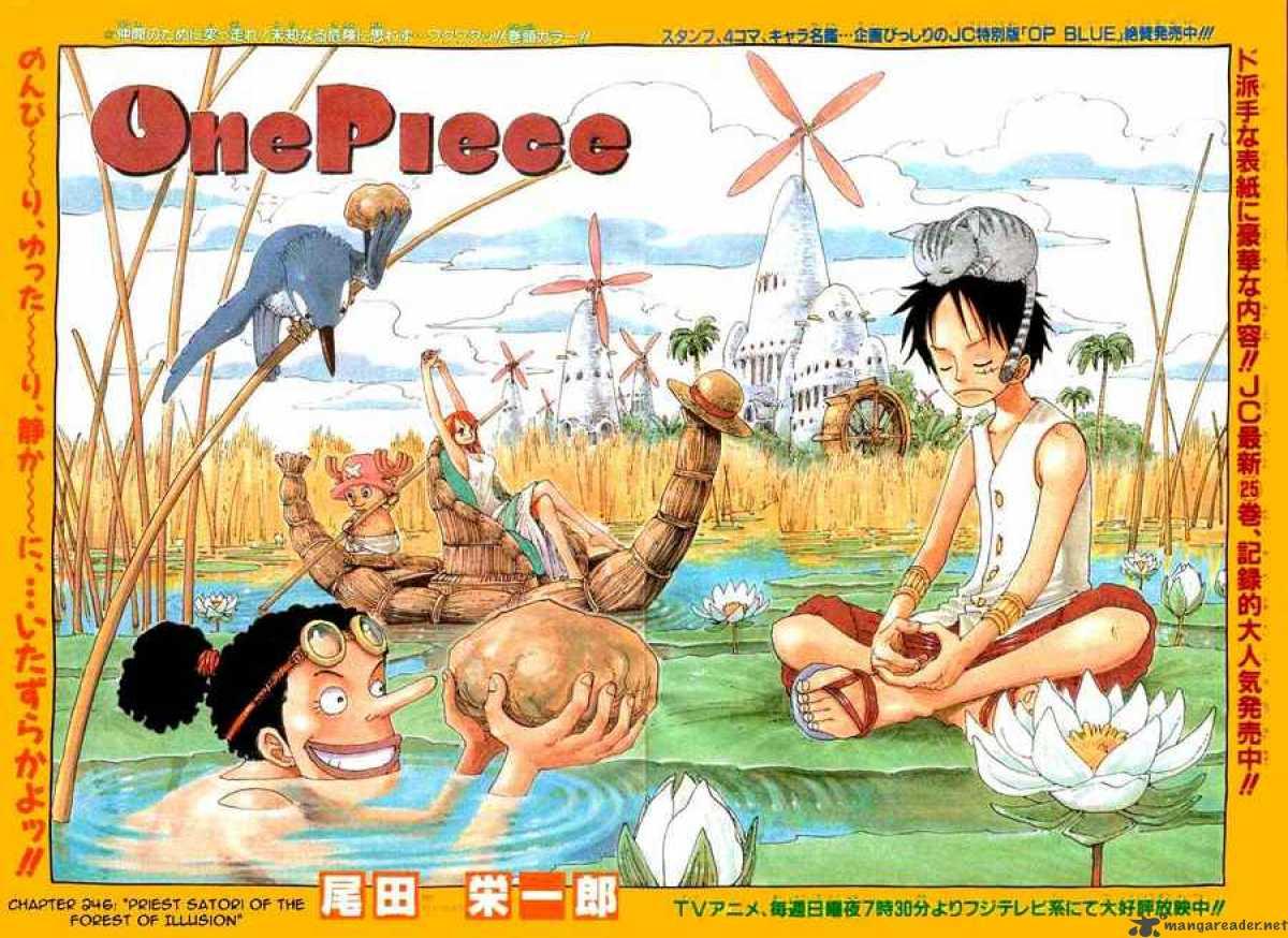 One Piece 246