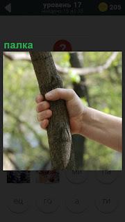 В лесу держится рукой за палку человек
