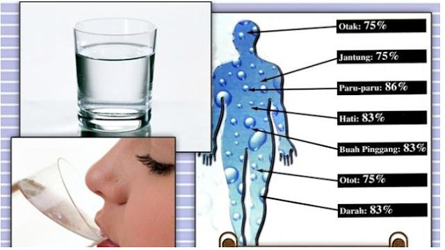 Minum Air Putih Dengan Cara ini TERNYATA! Bisa Kurangi Berat Badan 4,3 Kg Per Hari Low..