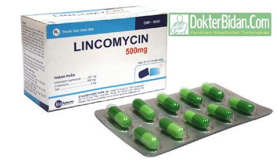 Lincomycin - Manfaat Efek Samping Peringatan Dosis dan Cara Memakainya Untuk Anak Anak dan Orang Dewasa