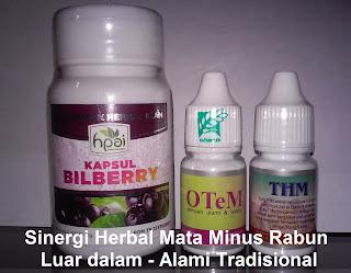 Cara alami mengobati rabun mata plus minus herbal bilberry hpai
