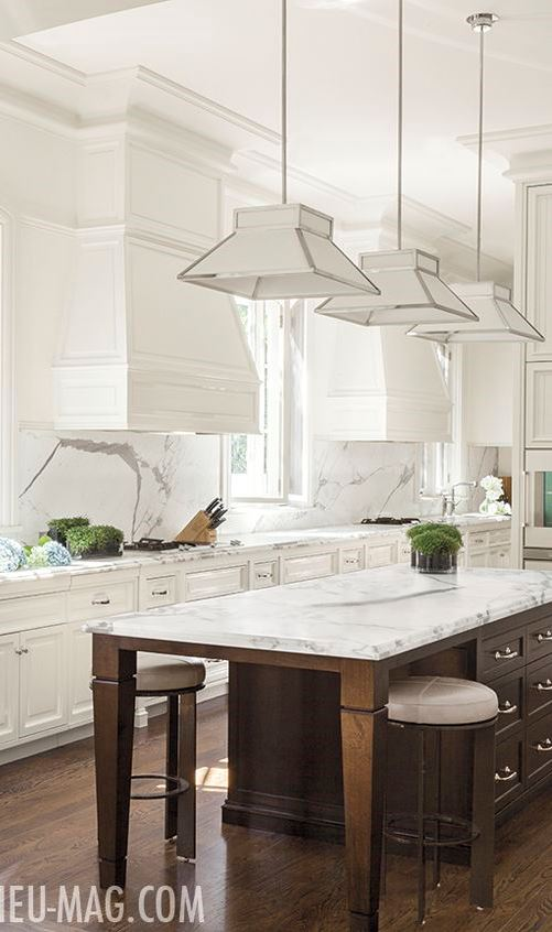 white trendy kitchen design idea