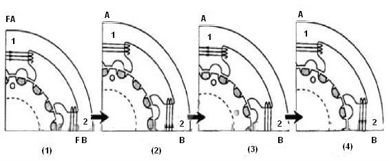 arduino en espa u00f1ol  motores paso a paso
