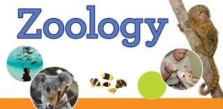 scc education,C.P.M.T. Entrance Exam., Zoology : Solved Paper