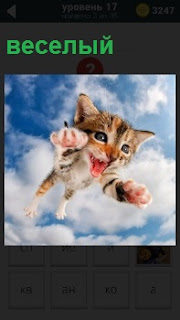 Кот в полете под облаками с хорошим и веселым настроением с открытым ртом и высунув язык