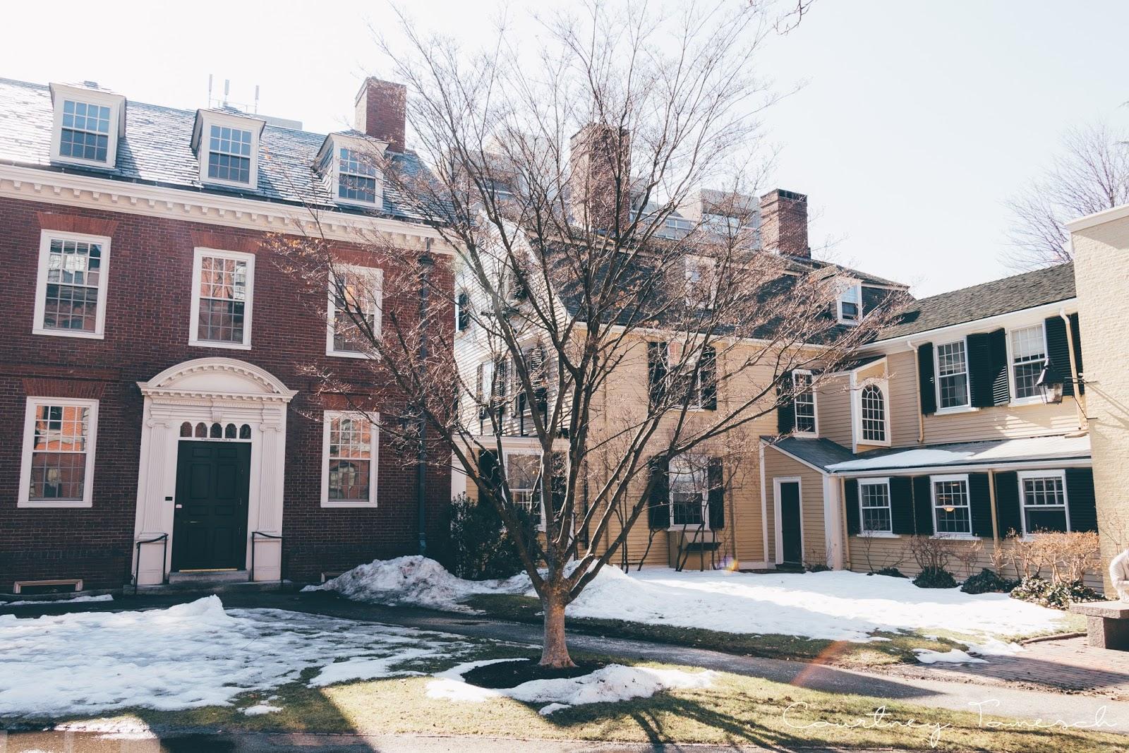 Courtney Tomesch Harvard Square Cambridge Mass