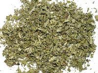 乾燥したコモンセージの葉