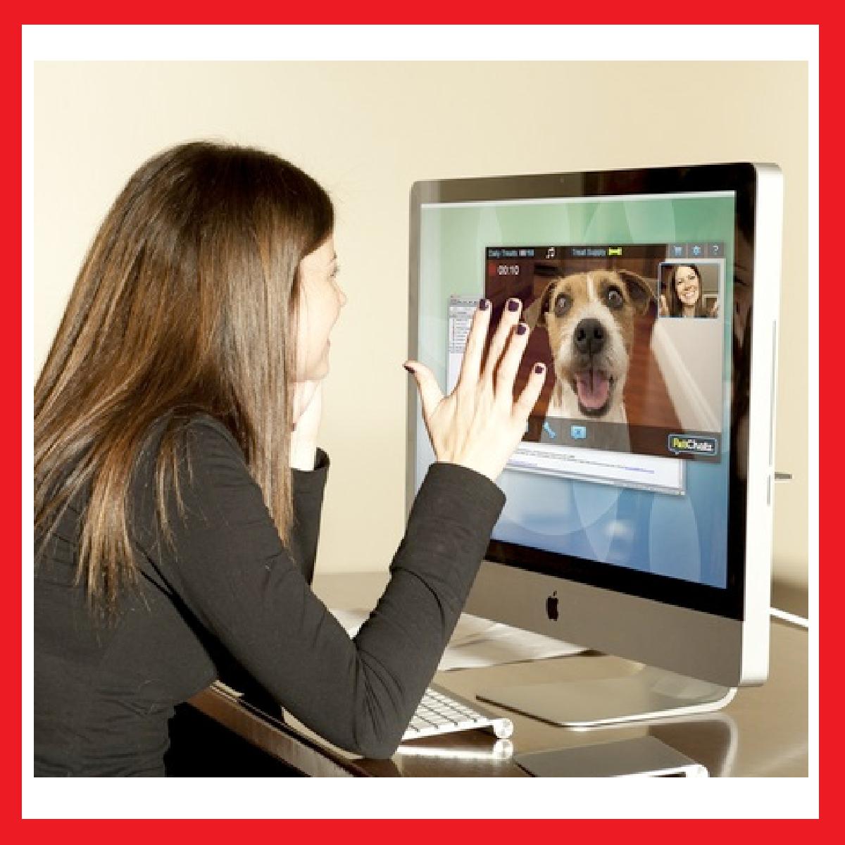 cadeaux 2 ouf id es de cadeaux insolites et originaux petchatz un vid o phone pour chien. Black Bedroom Furniture Sets. Home Design Ideas