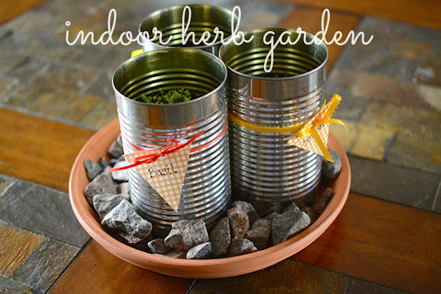 indoor herb garden; DIY | My Darling Days