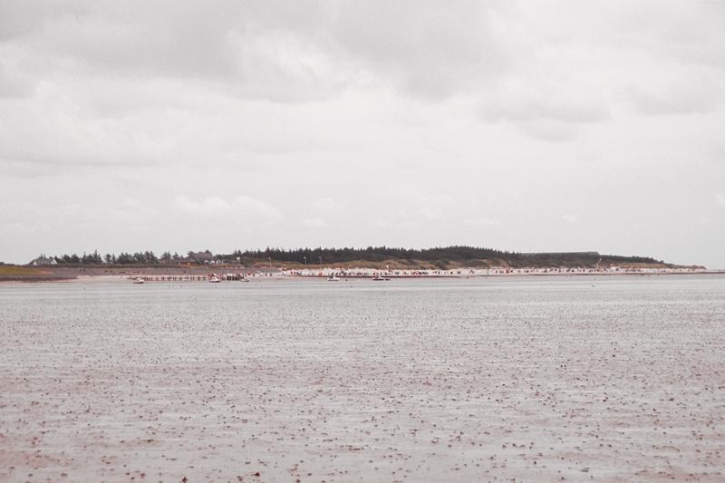 Wattwanderung Nordsee von Föhr nach Amrum