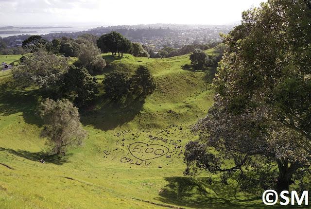 Photo du cratère ecntral One Tree Hill Auckland Nouvelle-Zélande
