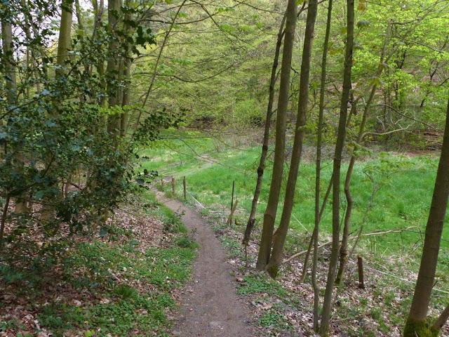 Wanderung Witten Wetter Ruhrgebiet Ruhrpott Ardeygebirge Hunderunde Hund Route Tour wandern
