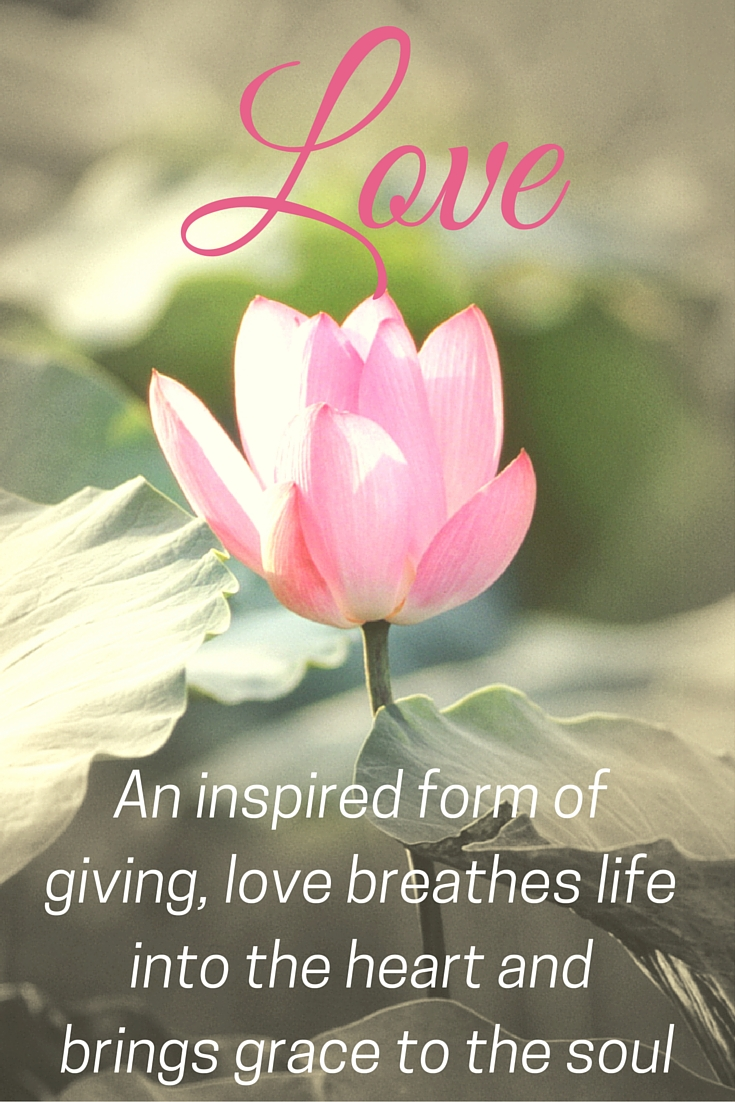 Love is... | Morgan's Milieu: This quote about love really says it all for me.