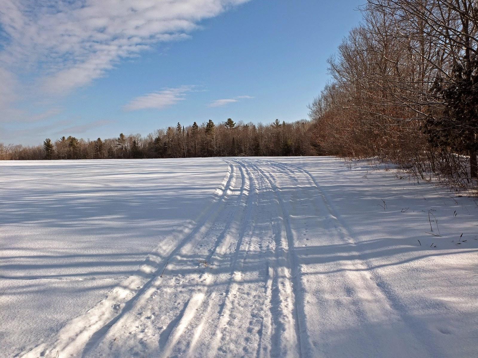 Hiking in Maine with Kelley: 1/16/15 Glenburn Snowmobile Trail